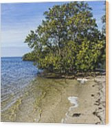 Calm Waters On The Gulf Wood Print