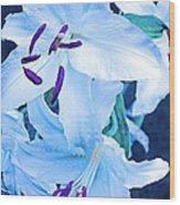 Calming Lily Wood Print