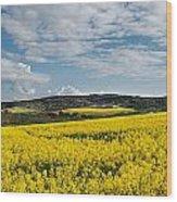 Caloa Field Wood Print