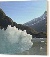 Calved Ice Alaska Wood Print