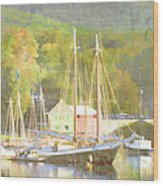 Camden Harbor Maine Wood Print by Carol Leigh