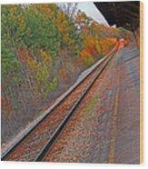 Camden Sc Station4603 Wood Print