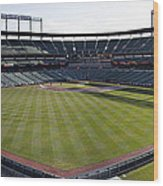 Camden Yards - Baltimore Orioles Wood Print by Darleen Stry