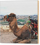Camel And Jerusalem From Mount Olive Wood Print by Thomas R Fletcher