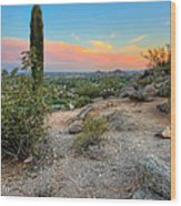 Camel Back Mountain Cactus View Wood Print