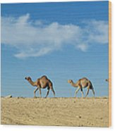 Camel Train Wood Print
