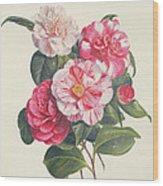 Camelias Wood Print