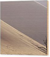 Camelthorn Alhagi Maurorum In Sand Dune Wood Print