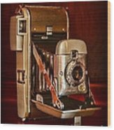 Camera - Vintage Polaroid Land Camera 80 Wood Print