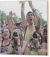 Cameras In The Crowd Wood Print