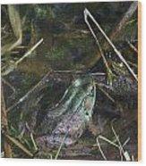 Camo Frog Ninja Wood Print