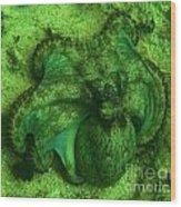 Camoflauged Octopus Wood Print