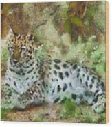 Camouflage Cat Wood Print