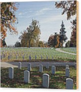 Camp Nelson National Cemetery Wood Print