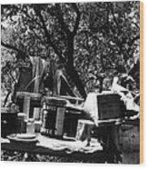 Camp Supplies Wood Print