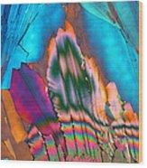 Campari 13 Wood Print