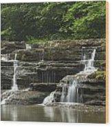 Campbell Falls 5 Wood Print