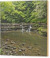 Campbell Falls 6 Wood Print