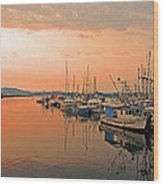 Campbell River Marina Wood Print