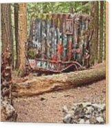 Campsite Near A Train Wreck Wood Print