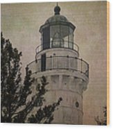 Cana Island Light Wood Print