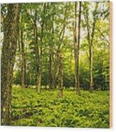 Canaan Path Wood Print