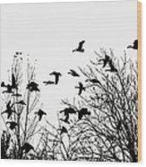 Canada Geese Flight Silhouette Wood Print