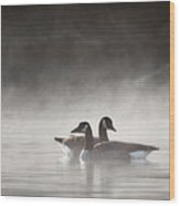 Canada Geese In The Fog Square Wood Print