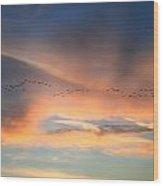 Canada Goose Flock Sunset Wood Print