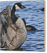 Canada Goose Pictures 84 Wood Print