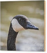 Canada Goose Profile Wood Print