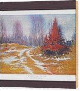 Canadian Calm Wood Print