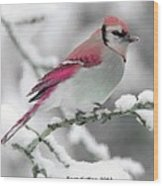 Canadian Cardinal Wood Print