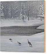 Canadian Geese In Winter Wood Print