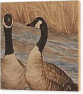 Canadian Geese Wood Print