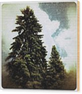 Canadian Pines Wood Print