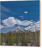 Canadian Rockies 13008 Wood Print