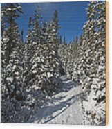Canadian Winter Wonderland.. Wood Print