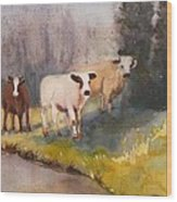 Canal Cows Wood Print