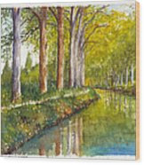 Canal Du Midi At Toulouse France Wood Print