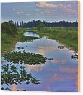 Canal In The Glades Wood Print