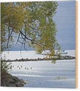 Canandaigua Lake Outlet Wood Print