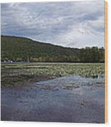 Canandaigua Lake Panorama Wood Print