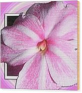 Candy Cane Flower Wood Print