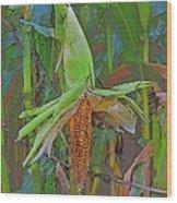 Candy Corn Wood Print by Thomas  MacPherson Jr