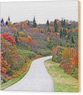 Candy Land On The Blueridge Parkway Wood Print