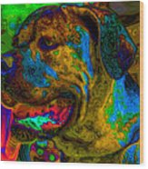 Cane Corso Pop Art Wood Print
