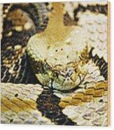 Canebrake Wood Print