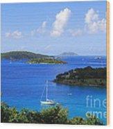Caneel Bay In St. John In The U. S. Virgin Islands Wood Print