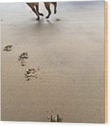 Canine Beach Jogging Wood Print